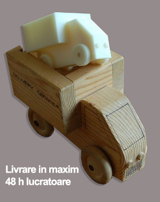 livrare-printuri-3D
