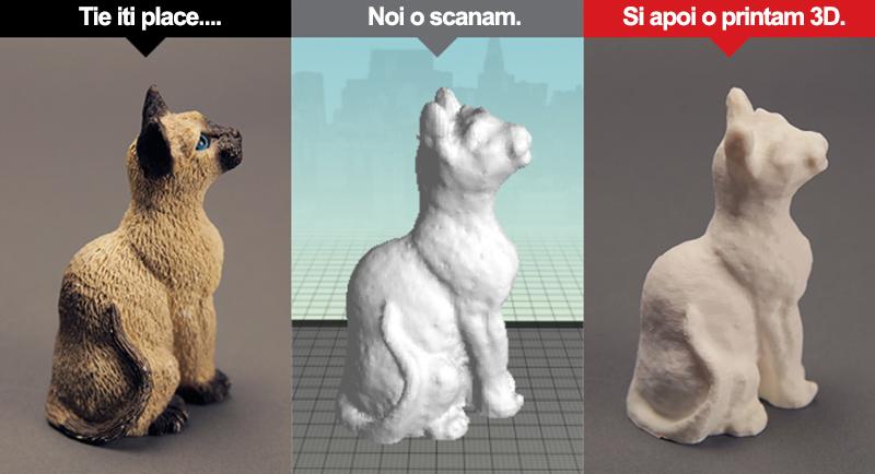 pisica printata 3D