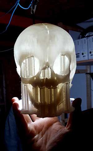 Craniu uman - Model medical de studiu extras din CT