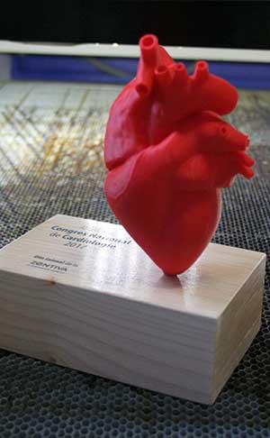 trofee medici cardiologi printate 3D inima